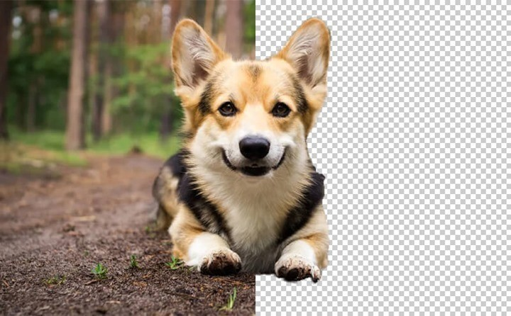 Remove Image Background Online