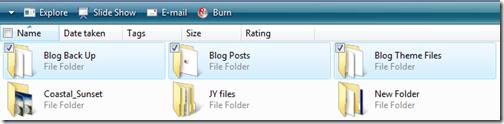 folder view  in Vista